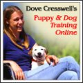Puppy and Dog Training Online by Dove Cresswell