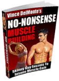 No Nonsense Muscle Building by Vince Delmonte